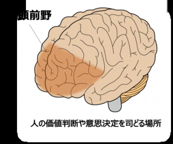 あなたの脳、ゴミ屋敷化してませんか?
